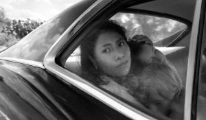 Guionistas nominan 'Roma', 'Black Panther', 'A Star Is Born'